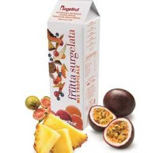 TK-Fruchtpüree Tropical 1Kg