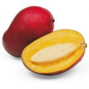 Mec3 Mango 500 c.p. 1,25Kg